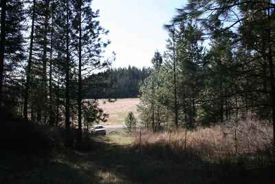 Newman Lk Residential Lots & Land For Sale: N Muzzy