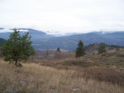 Kettle Falls Residential Lots & Land For Sale: Friedlund