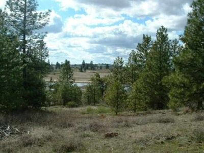Reardan WA Residential Lots & Land Sold: $57,000