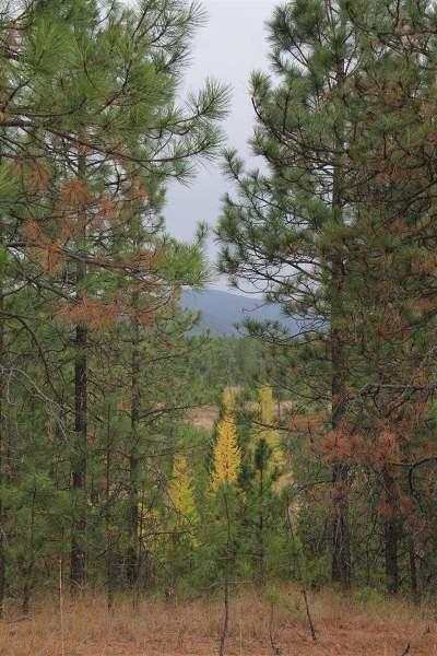 Springdale Residential Lots & Land For Sale: Woods