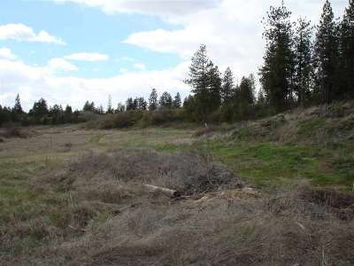 Spokane Residential Lots & Land For Sale: W 21st