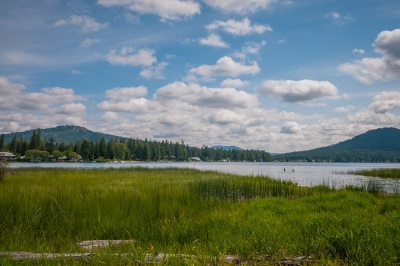 Loon Lk Residential Lots & Land For Sale: Shore Acres #C