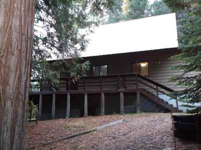 Single Family Home For Sale: 2594 Tamarack Dr