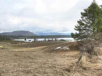 Valley Residential Lots & Land For Sale: S Waitts Lake