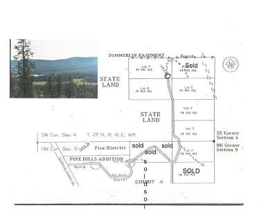 Nine Mile Falls Residential Lots & Land For Sale: Summerlin