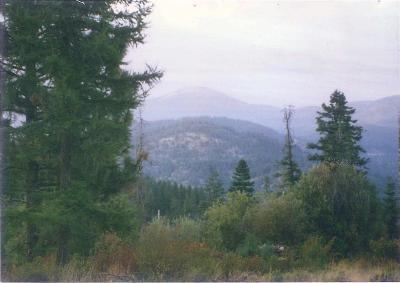 Spokane Valley Residential Lots & Land For Sale: Webster