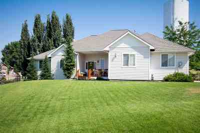 Veradale Single Family Home For Sale: 2313 S Steen Rd