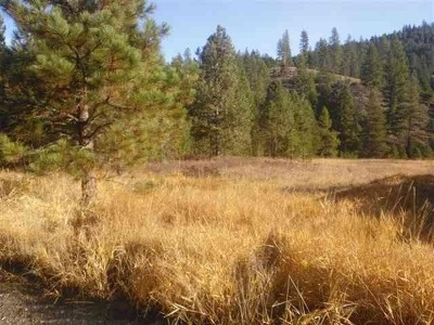 Loon Lk Residential Lots & Land For Sale: Powers