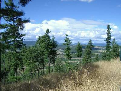 Spokane Residential Lots & Land For Sale: W Mary Lee