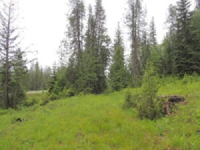 Cusick Residential Lots & Land For Sale: Hwy 20