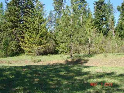 Cusick Residential Lots & Land For Sale: Nina