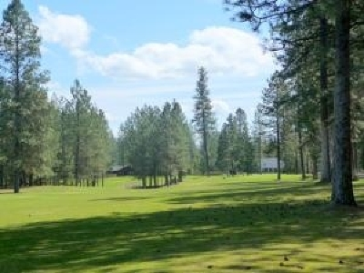 Chewelah Residential Lots & Land For Sale: Hogans