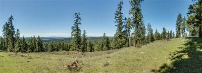 Chattaroy Residential Lots & Land For Sale: E Deer Creek