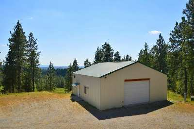 Spokane County, Stevens County Single Family Home For Sale: 16905 E Scribner Branch Ln