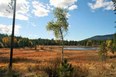 Valley Residential Lots & Land For Sale: Little Sweden