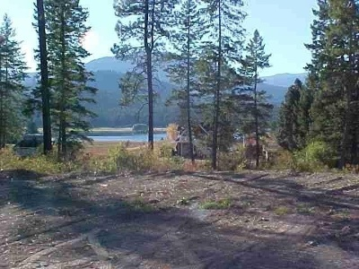 Valley Residential Lots & Land For Sale: S Waitts Lake Lot #a