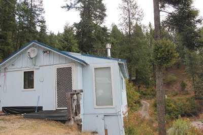 Spokane County, Stevens County Single Family Home For Sale: 4075 A N Deer Lake Rd