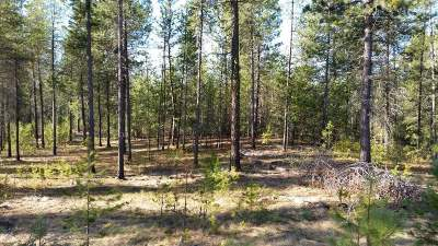 Deer Park Residential Lots & Land For Sale: Denison Chattaroy #Parcel #