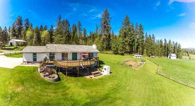Single Family Home For Sale: 601 Phay Rd