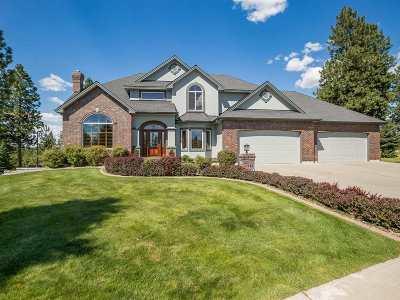 Spokane Single Family Home For Sale: 6920 W Iroquois Dr