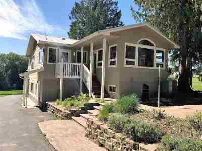 Spokane County, Stevens County Single Family Home For Sale: 837 A Lindsay Rd