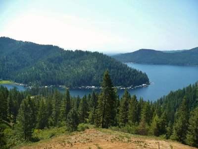 Loon Lk Residential Lots & Land For Sale: N Deer Lake #Lot 3