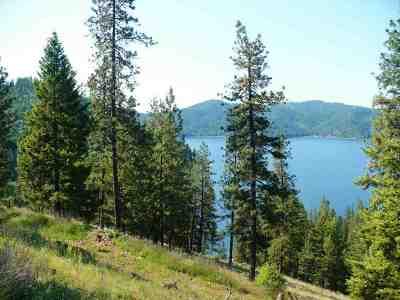 Loon Lk Residential Lots & Land For Sale: N Deer Lake #Lot 5