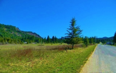 Cusick Residential Lots & Land For Sale: Larch