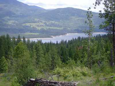 Kettle Falls Residential Lots & Land Ctg-Other: Shermann Creek