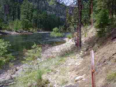 Kettle Falls Residential Lots & Land For Sale: Rockcut
