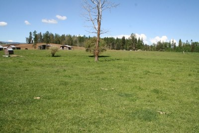 Residential Lots & Land For Sale: Grove