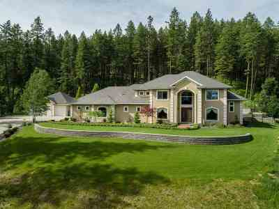 Spokane Single Family Home For Sale: 5410 S Corkery Road Extension Rd