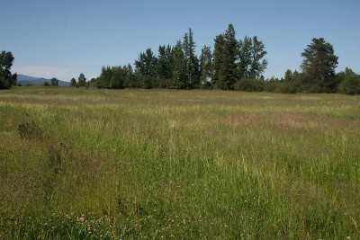 Deer Park Residential Lots & Land For Sale: Dahl