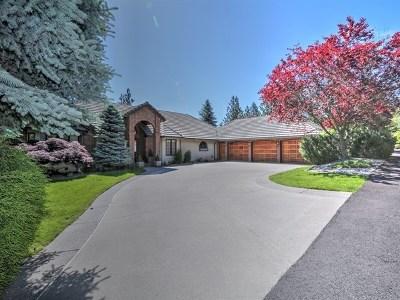 Veradale Single Family Home For Sale: 4904 S Progress Ct