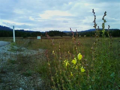 Newport WA Residential Lots & Land For Sale: $69,900