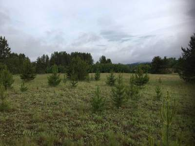 Newport WA Residential Lots & Land For Sale: $89,900