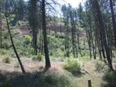 Tumtum Residential Lots & Land For Sale: Sailor