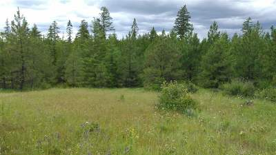 Newport Residential Lots & Land For Sale: Thompson