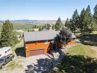 Greenacres Single Family Home For Sale: 21108 E Saltese Lake Rd
