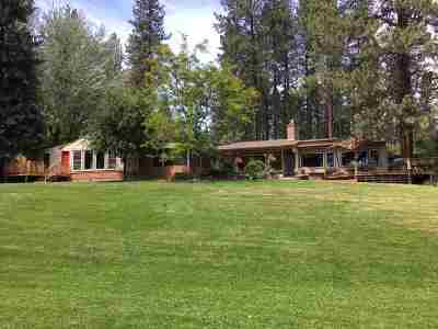 Spokane County, Stevens County Single Family Home For Sale: 20311 N Little Spokane Dr