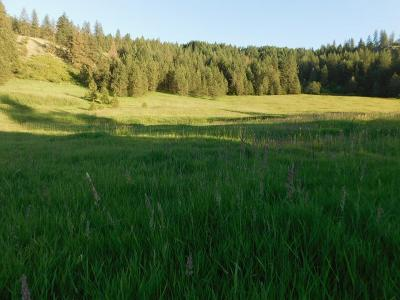 Hunters Residential Lots & Land For Sale: Bissell