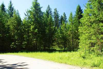 Newport Residential Lots & Land For Sale: Pines