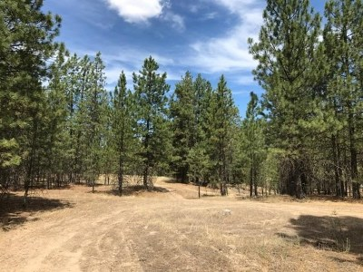 Nine Mile Falls Residential Lots & Land For Sale: Hwy 291
