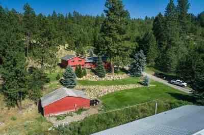 Spokane Single Family Home For Sale: 5727 S Dishman-Mica Rd