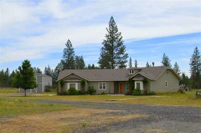 Spokane County, Stevens County Single Family Home For Sale: 40817 N Newport Hwy Hwy