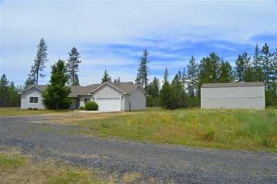 Spokane County, Stevens County Single Family Home For Sale: 40909 N Newport Hwy