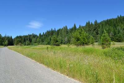 Ione Residential Lots & Land For Sale: Sunset Dr N