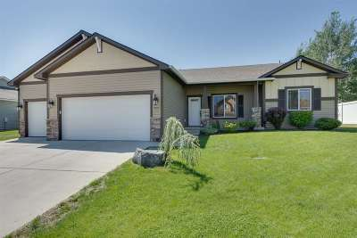 Spokane Single Family Home For Sale: 9115 N Warren St