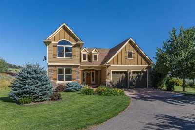 Spokane Single Family Home New: 4014 E Walters Ln