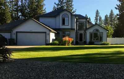 Nine Mile Falls Single Family Home For Sale: 6220 Moriah Dr